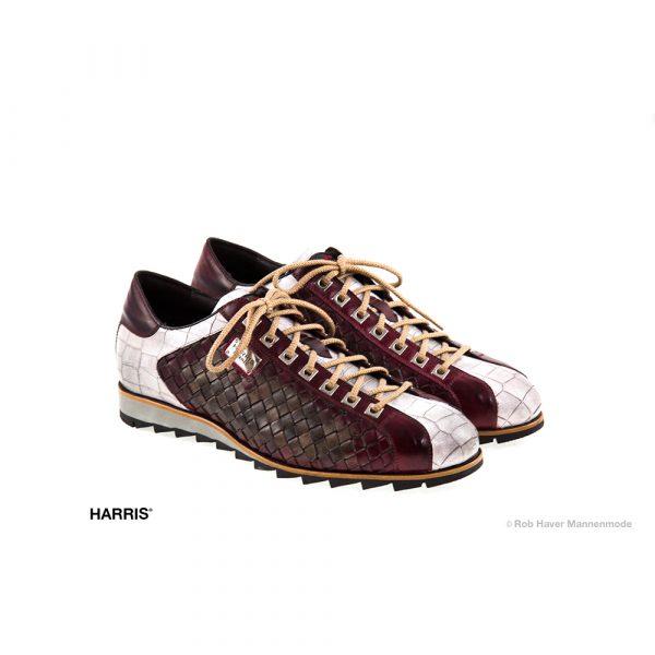 Harris rundleren, Rood met witte schoen