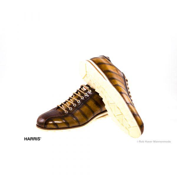 Harris schoenen Lino-bruin